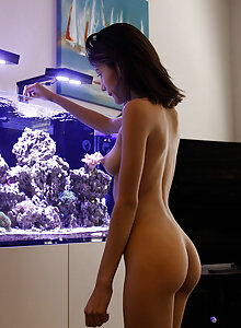 Exotic looking honey Emelia Pearl showing her slender nude form in her apartment